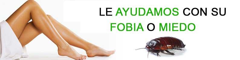 exito-hipnosis-fobias-y-miedos